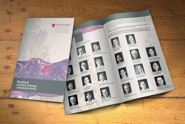 Medical Consulting Multi-Page Brochure Design